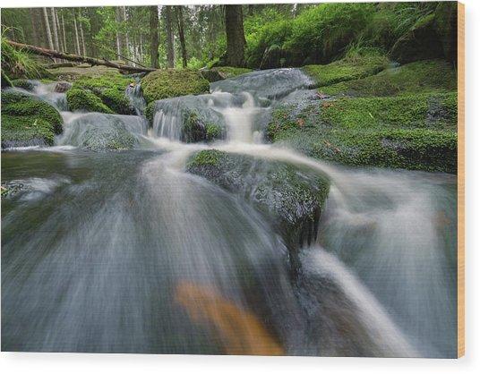 Bode, Harz Wood Print