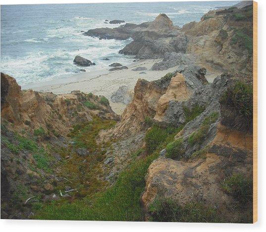 Bodega Bay Wood Print