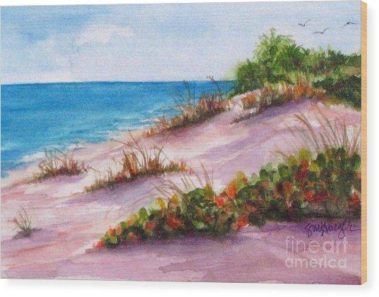 Brohard Beach Wood Print by Suzanne Krueger
