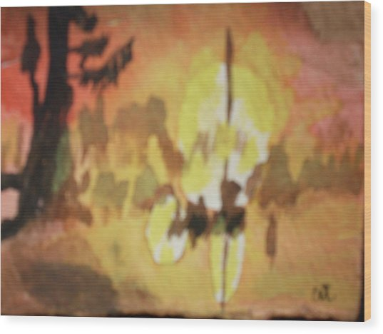 Cajun Sunrise Wood Print by Warren Thompson
