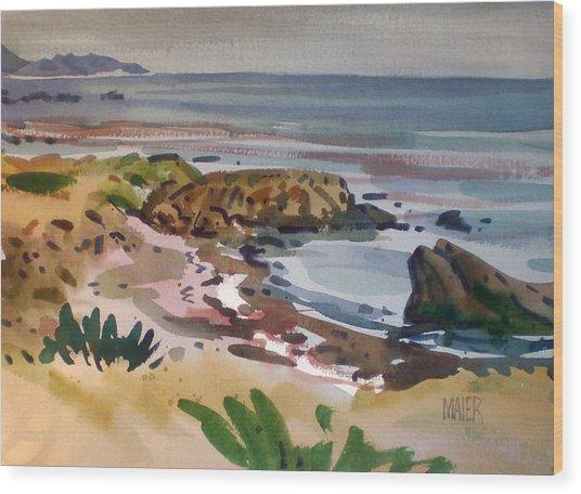 California Coast Wood Print by Donald Maier