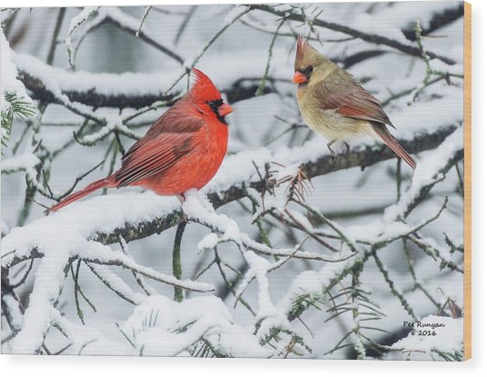 Cardinal Couple Wood Print