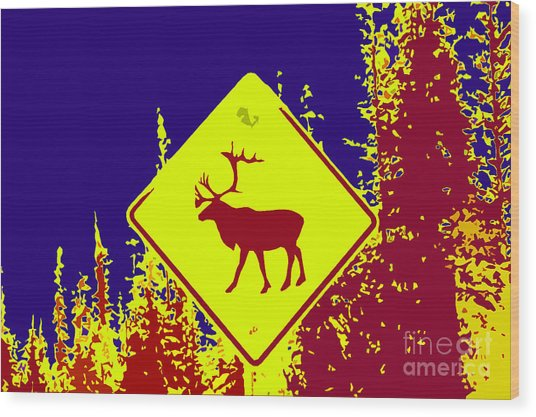 Caribou Crossing Red Blue Wood Print