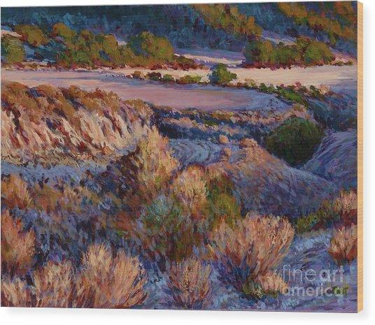 Cebada Canyon Blues Wood Print