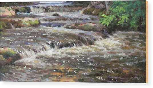 Cedar Creek Wood Print by Larry Seiler