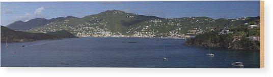 Charlotte Amalie Wood Print by Gary Lobdell