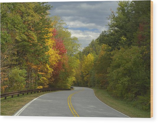 Cherohala Skyway In Autumn Color Wood Print by Darrell Young
