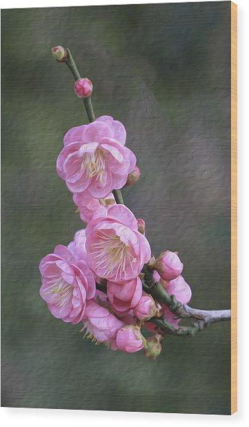 Cherry Flower Wood Print
