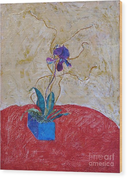 Christmas Orchid Wood Print by James SheppardIII