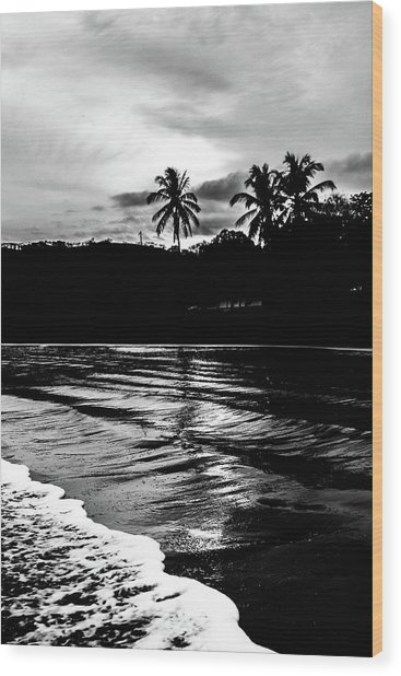 Coast Of Eden Wood Print