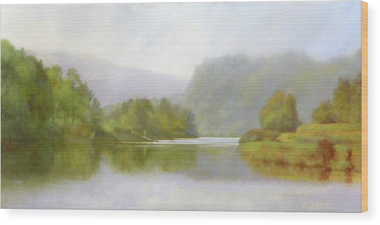Connecticut River From River Road II Wood Print