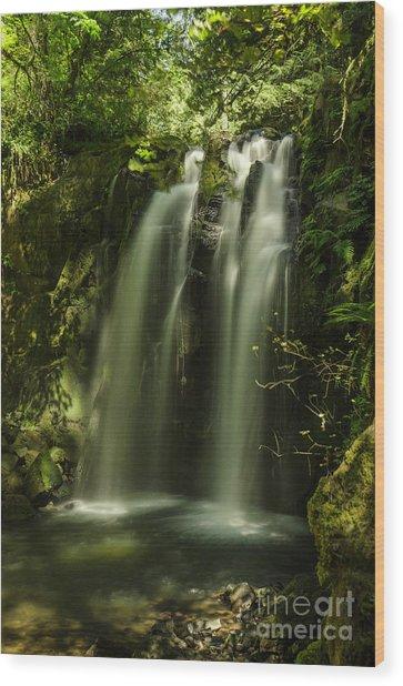Cool Down Wood Print