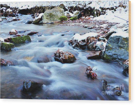 Cool Waters Wood Print