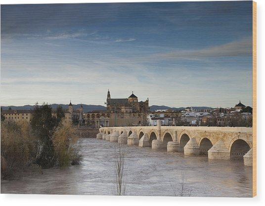 Cordoba Wood Print by Andre Goncalves