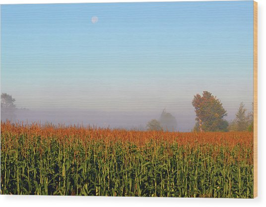 Cornfield Moonset Wood Print