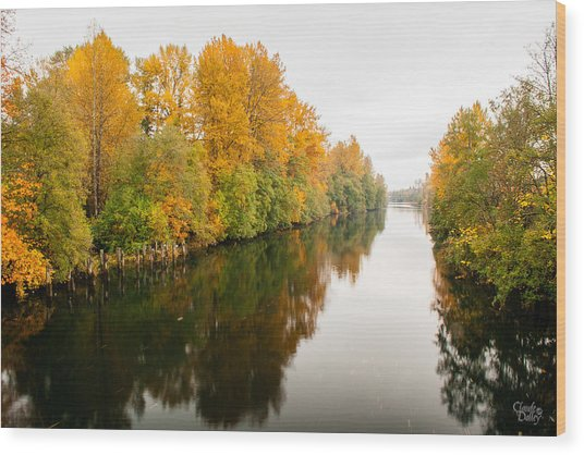Courtenay River Wood Print