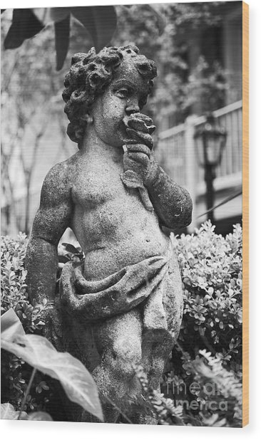 Courtyard Statue Of A Cherub French Quarter New Orleans Black And White Wood Print