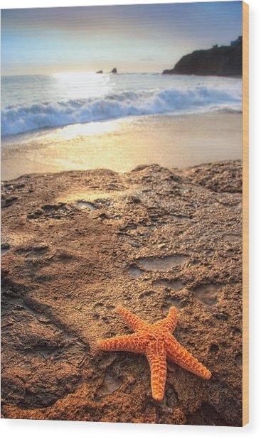 Crescent Bay Laguna Beach California Wood Print by Utah Images