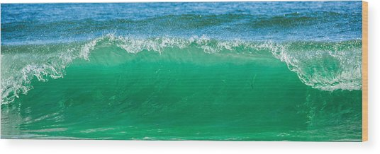 Cresting Wave Wood Print by Paula Porterfield-Izzo