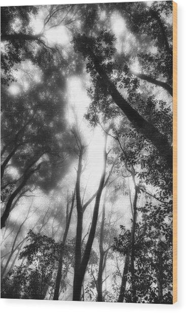 Dejavu Wood Print