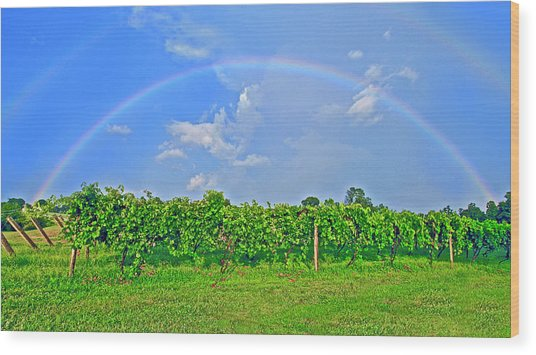Double Rainbow Vineyard, Smith Mountain Lake Wood Print