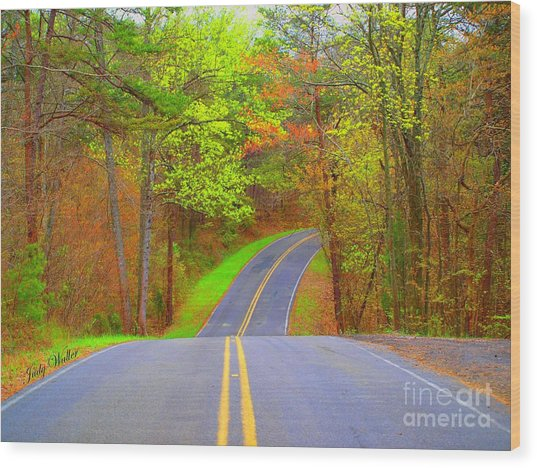 Down A Country Road Wood Print
