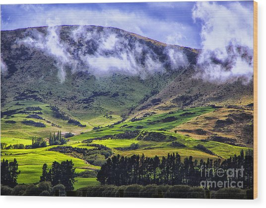 Down In The Valley Wood Print by Rick Bragan