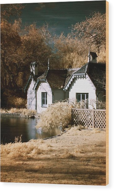 Duck Island Cottage Wood Print