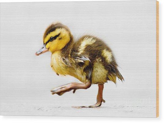 Duckling Parade Wood Print