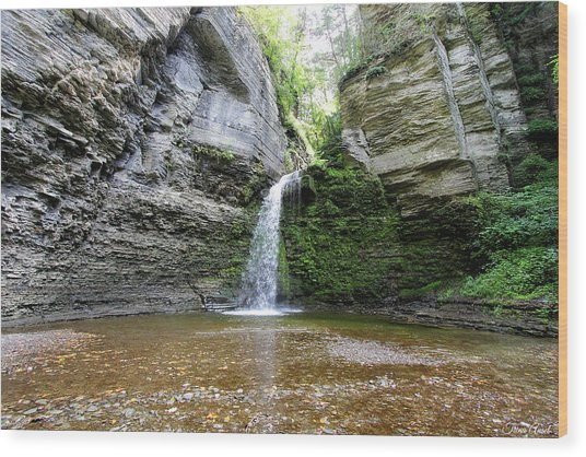 Eagle Cliff Falls In Ny Wood Print