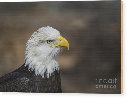 Eagle Profile Wood Print