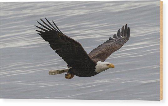 Eagle Soaring Over The Ocean Wood Print