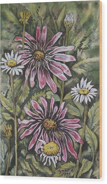Echinachea And  Daisies Wood Print