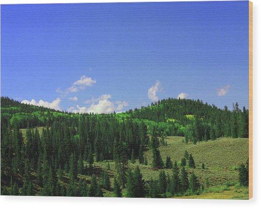 Faafallscene118 Wood Print