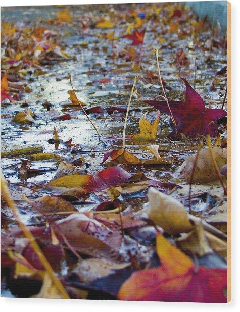 Fall Wood Print by Jason Leonti
