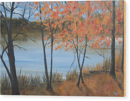 Fall N Lake Wood Print by Pete Maier