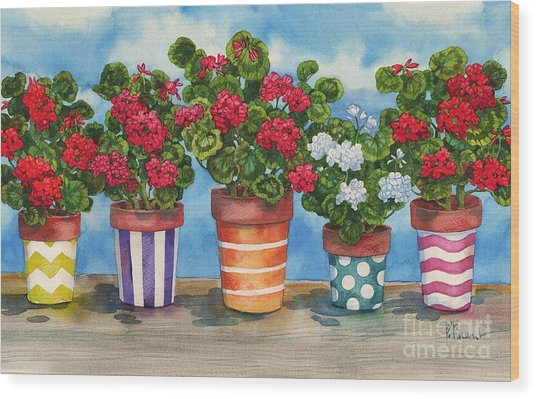 Fancy Pots Geraniums Wood Print by Paul Brent