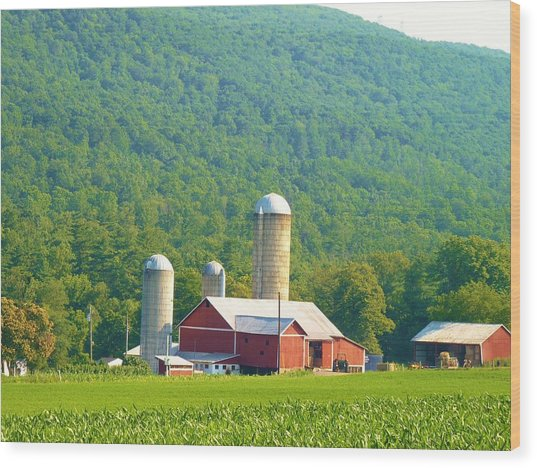 Farm In Belleville Pa Wood Print