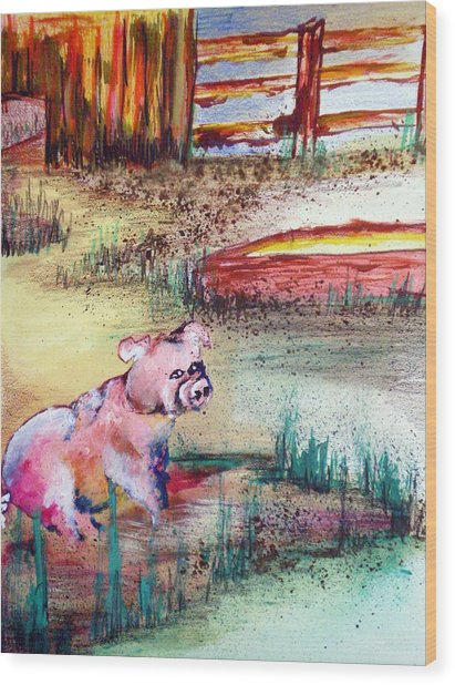 Farm Piggy Wood Print by Tammera Malicki-Wong