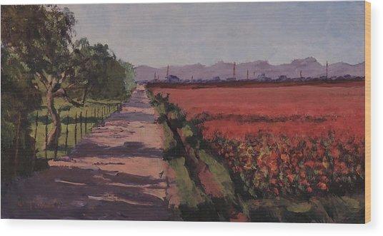 Farm Road Wood Print