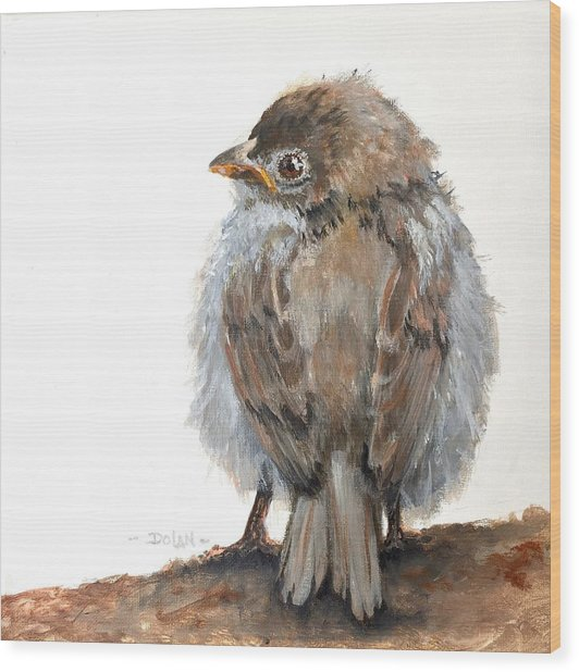 Fledgling Sparrow Wood Print