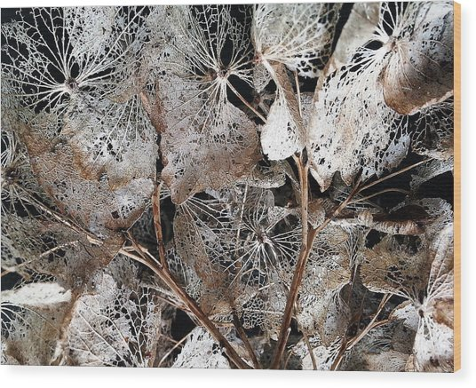 Wood Print featuring the digital art Floral Structure by Julian Perry