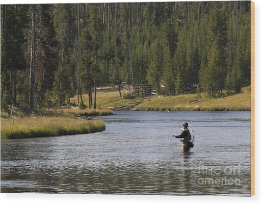Fly Fishing In The Firehole River Yellowstone Wood Print