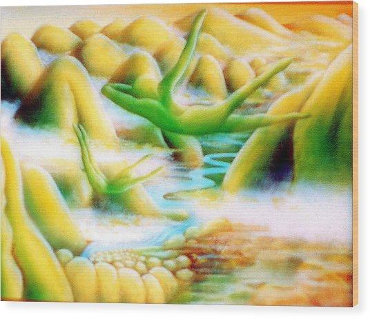 Flying Dream 1 Wood Print by Barbara Stirrup