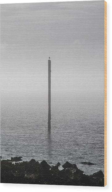 Wood Print featuring the photograph Fog On The Cape Fear River by Willard Killough III