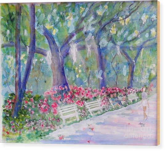 Forsyth Park Savannah Wood Print