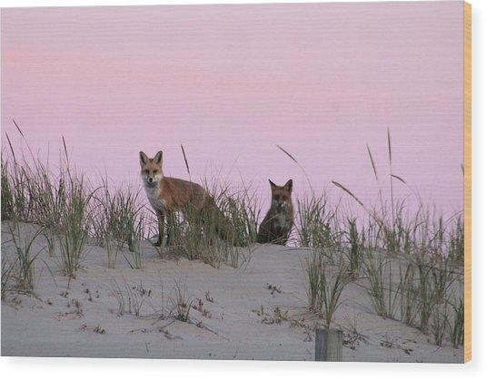 Fox And Vixen Wood Print