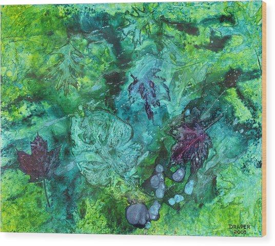 Gilkey Creek Autumn Wood Print by James Douglas Draper
