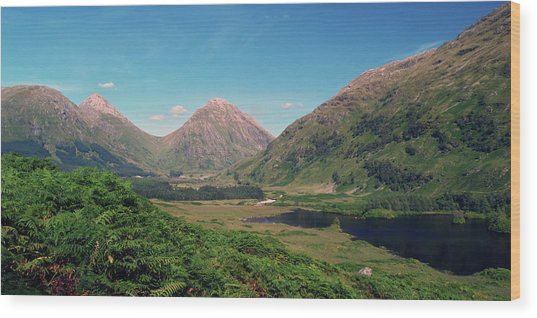 Glen Etive Wood Print by Steve Watson