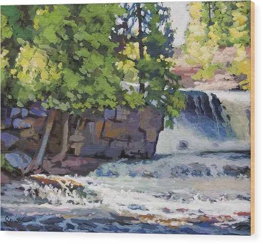 Gooseberry Falls Wood Print by Larry Seiler